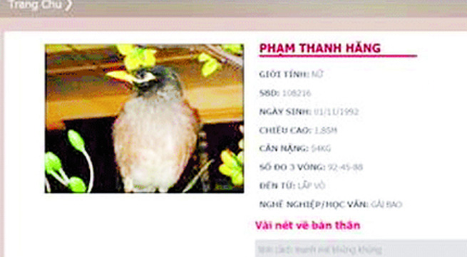 Vietnam's next top model: Những hình ảnh xấu xí và cẩu thả