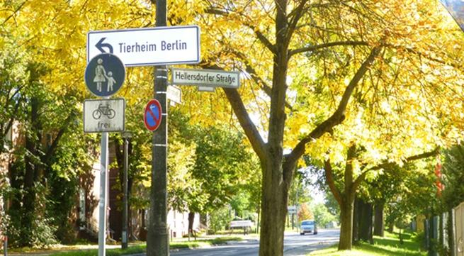 Khung cảnh sang thu tuyệt đẹp ở Đức