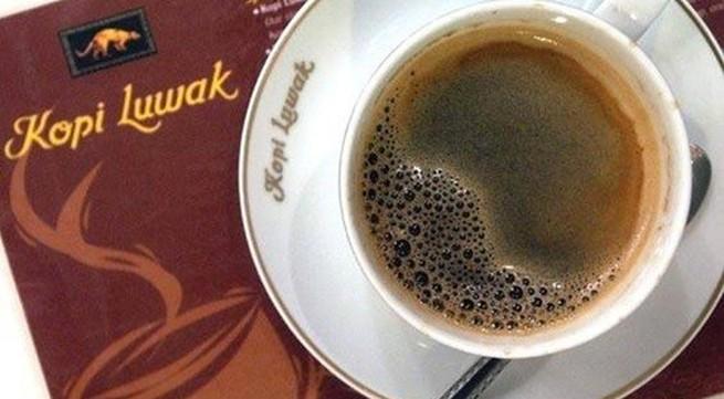 Sự thật tàn nhẫn sau mỗi ly cà phê đắt nhất thế giới