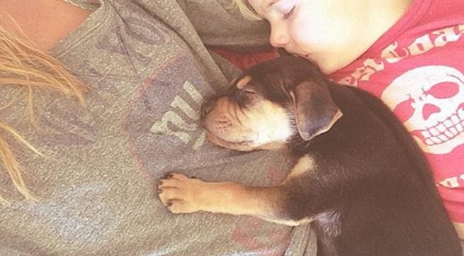 Chùm ảnh siêu dễ thương khi bé ngủ cùng cún con