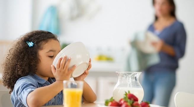 Những nguyên tắc ăn uống cho bé 1-3 tuổi mẹ nên biết