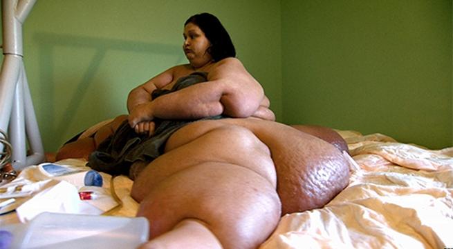 """Cận cảnh sinh hoạt của """"cô nàng khổng lồ"""" nặng gần nửa tấn"""