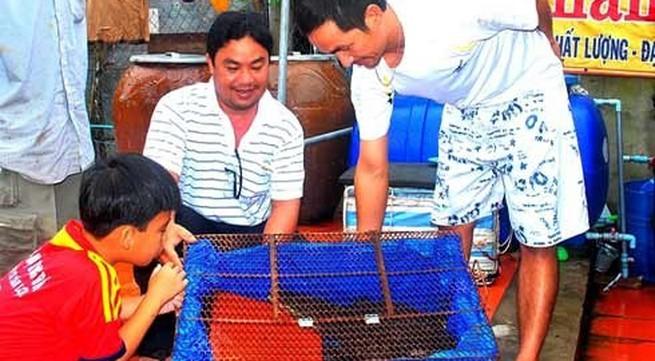 Rao bán cá sấu biết... sủa tiếng chó vì phiền phức