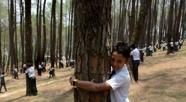 Hơn 2.000 người dân Nepal ôm cây bảo vệ môi trường