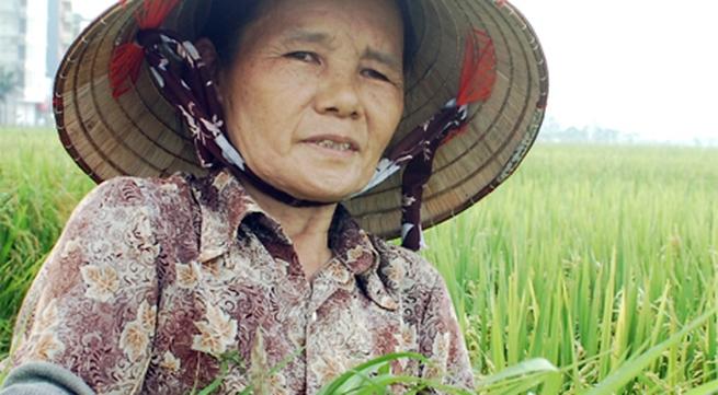 Nông dân thu nhập 4,2 triệu đồng/năm: Rất thấp!