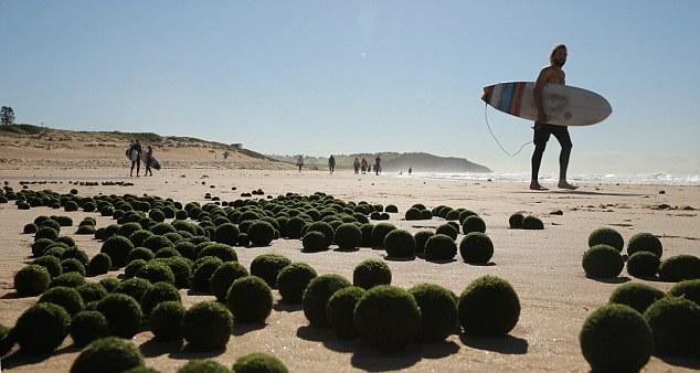 Cư dân địa phương sửng sốt khi bắt gặp hàng ngàn vật thể lạ trên bờ biển