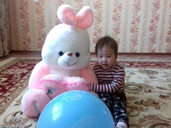Bé Sezim mới được hai tuổi. Ảnh: CEN
