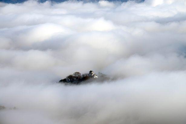 Tòa lâu đài nằm trên một con đồi nhỏ quanh năm chìm trong sương mù, nhìn ra thành phố Ono ở Fukui, Nhật Bản.