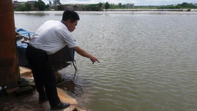Vào chiều 4/7, cũng tại xã Hưng Thái (cùng huyện Ninh Giang) xảy ra sự việc 2 chị em ruột tử vong dưới ao của gia đình. Ảnh: Đ.Tuỳ