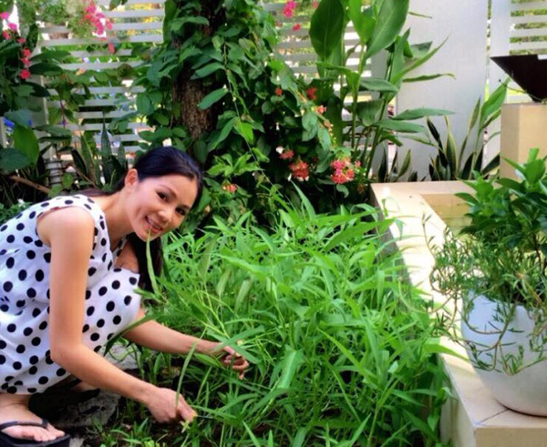 Bà chủ ngôi biệt thự hái rau trong vườn vào nấu.