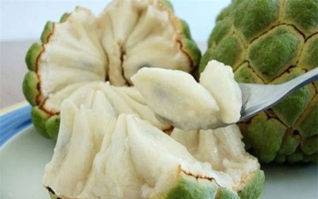 Cứ vào độ tháng 8, tháng 9, ấy là lúc những trái na chín thơm ngọt ngào đi vào mùa rộ.