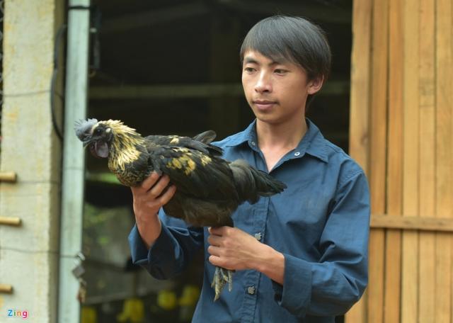 Có quy mô lớn nhất là trang trại của Vàng A Công. Sau khi tốt nghiệp Cao đẳng Thú y ở Thái Nguyên, Công trở về quê đầu tư hơn 100 triệu đồng mở trang trại nuôi 1.000 con gà đen.