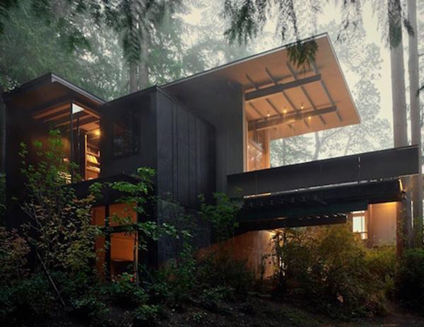 Trong suốt vài thập kỷ qua, ngôi nhà biến hình từ một căn hầm nhỏ thành nơi nghỉ dưỡng giữa rừng thông cao chót vót và hòa mình cùng với thiên nhiên xung quanh