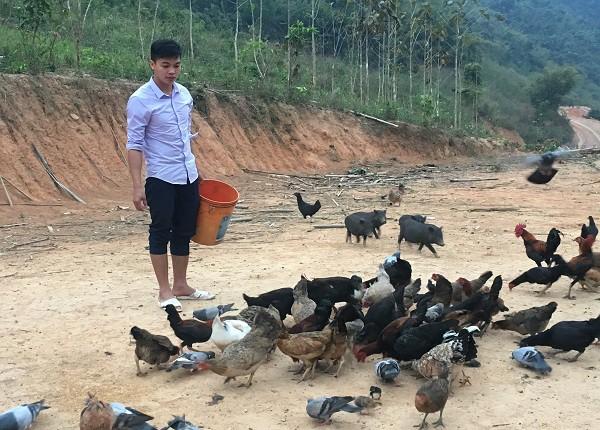 Ngoài nuôi gà đen, anh Tủi còn nuôi thêm nhiều đàn bồ câu Pháp