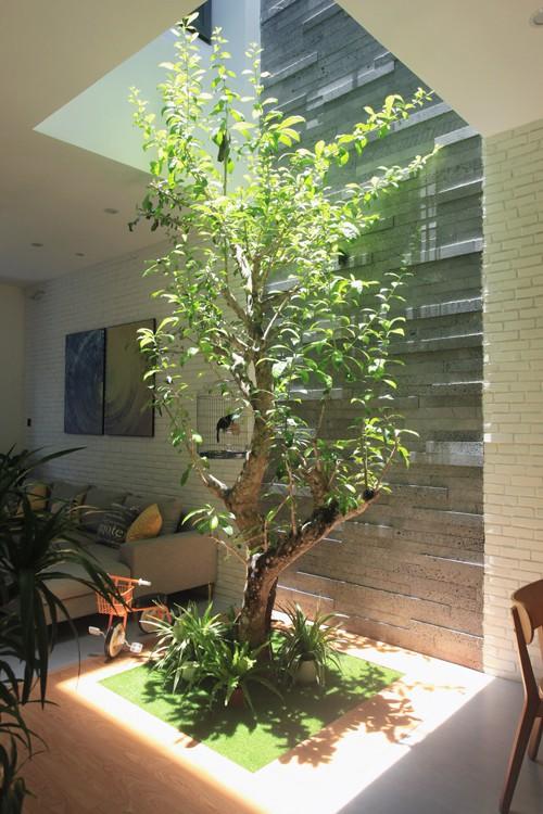 Góc yêu thích nhất của gia đình là khu vực giếng trời giữa nhà. Các thành viên ở phòng khách, bếp hay bàn ăn đều có thể ngắm nhìn cây xanh, nghe chim hót. Ở vị trí này tại tầng 2 cũng được bố trí bàn uống trà, đọc sách hướng ra giếng trời.