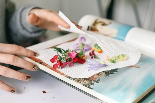 Đặt hoa đã chọn lên một tờ giấy. Hãy chắc chắn rằng chúng được tách ra và không chạm vào nhau.