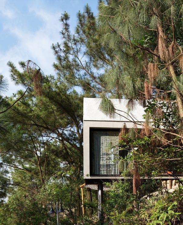 Căn nhà rộng khoảng 36m2, có thiết kế tối giản, chi phí thấp nhưng lại tiện nghi, ấm áp và đẹp đến nao lòng.