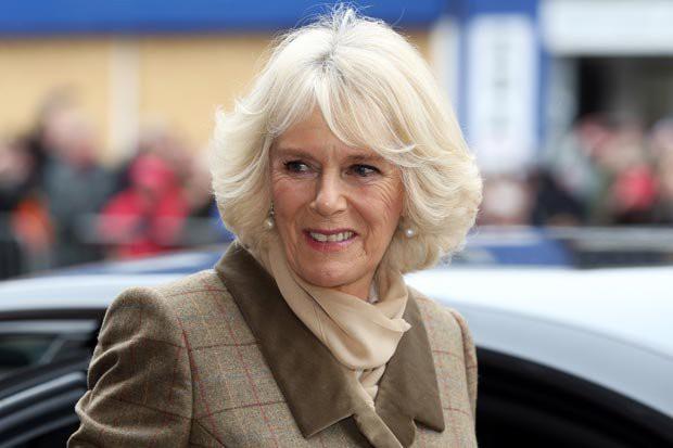 Bà Camilla được cho là luôn bắt bẻ con dâu.