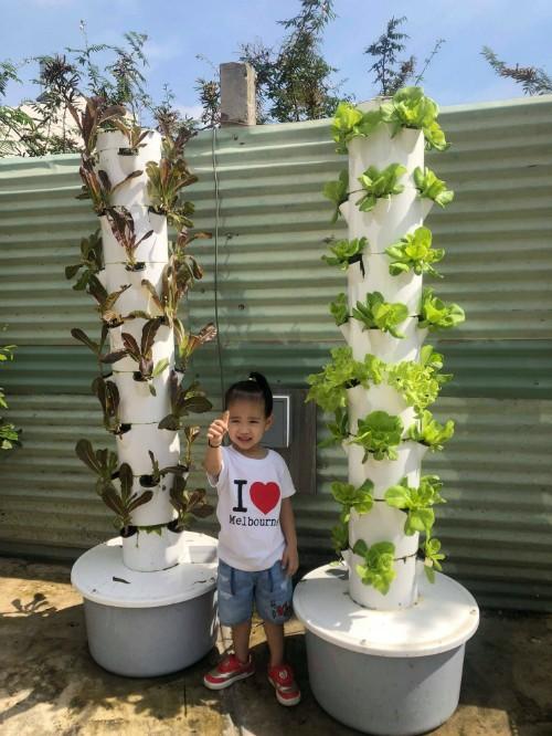 Ông xã của Thanh Vân đặt 2 tháp rau thuỷ canh để trồng rau muống, xà lách xanh, xà lách tím... Hệ thống tự động bơm dung dịch thủy canh 5 phút một lần và cứ tầm 15-20 ngày cho thu hoạch một đợt rau.