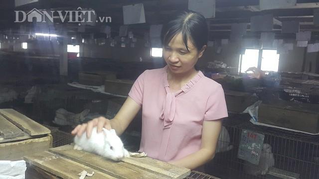 Nhờ nuôi thỏ mà mỗi tháng gia đình chị Phạm Thị Thủy có nguồn thu nhập gần 100 triệu đồng.