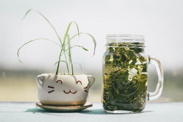 Gan của bạn đến lúc cần thải độc rồi, ghi nhớ 7 loại thực phẩm detox gan hiệu quả cho bữa ăn - Ảnh 5.
