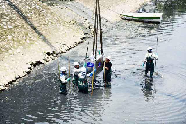 Tháo dỡ hệ thống làm sạch sông Tô Lịch, di chuyển đàn cá Koi sang Hồ Tây - Ảnh 4.