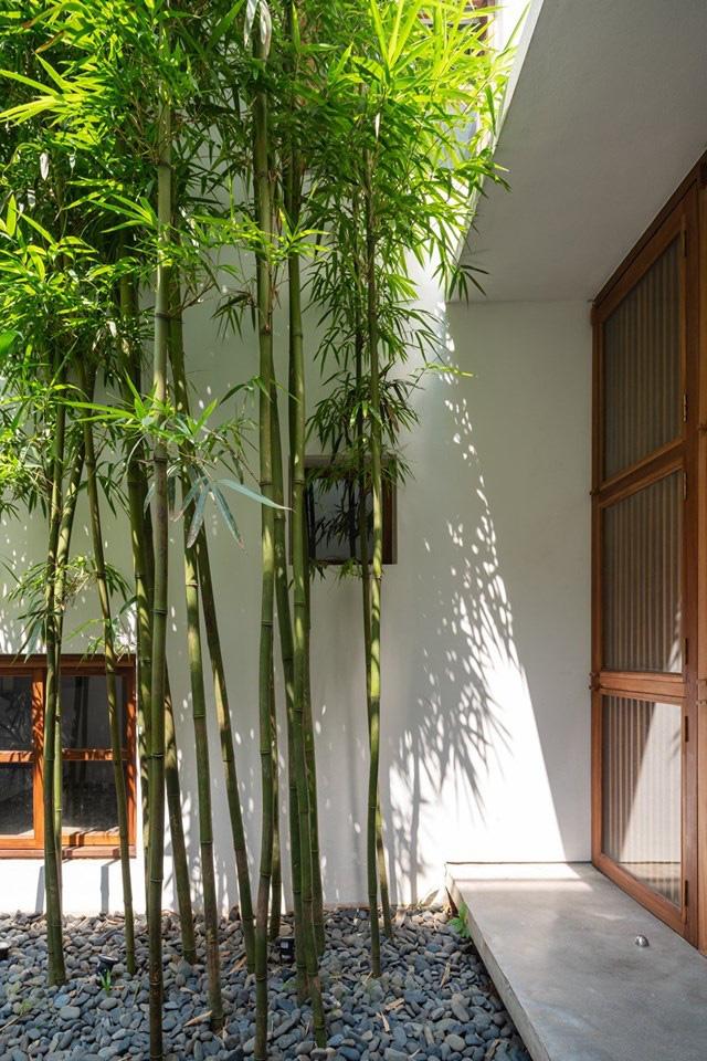 Nhà ngập nắng gió sau tường bao cao 9 mét  - Ảnh 4.