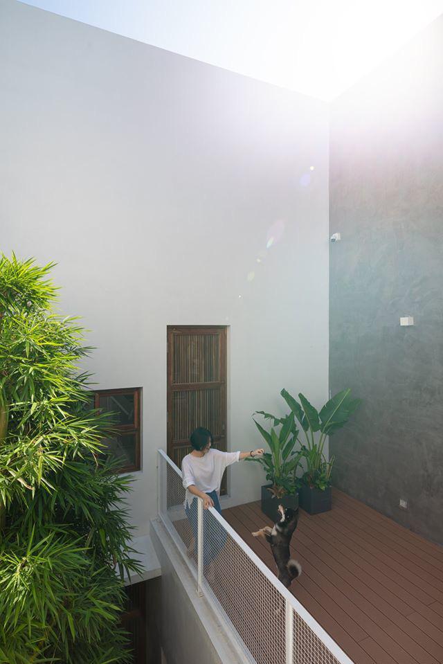 Nhà ngập nắng gió sau tường bao cao 9 mét  - Ảnh 5.