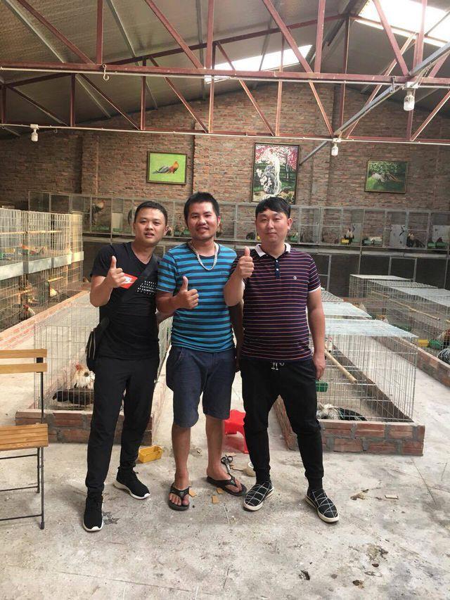 Theo anh Nam, khách Trung Quốc và Đài Loan rất yêu thích gà Tân Châu. Nhiều đoàn khách chi hàng chục triệu để lùng mua những con gà đẹp, độc của Việt Nam về làm cảnh