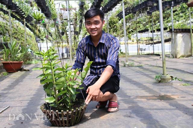Theo Nghi, mỗi nhà vườn sẽ có một bí quyết chăm sóc lan riêng của mình. Vì vậy, phân bón cũng như chế độ tưới cũng sẽ khác nhau.