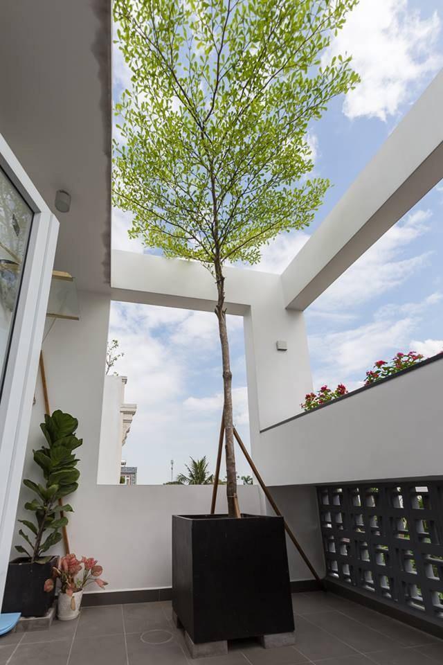 Để không gian thực sự an yên, cây xanh là một chất liệu không thể thiếu. Ngoài tiểu cảnh dưới tầng trệt, gia chủ có thể chăm sóc và ngắm nhìn những bồn hoa, cây xanh nơi sân thượng lầu hai như một cách thư giãn giữa những bộn bề công việc.