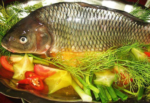 Bà Vương đã ăn mật của con cá 4kg. (Ảnh minh họa)