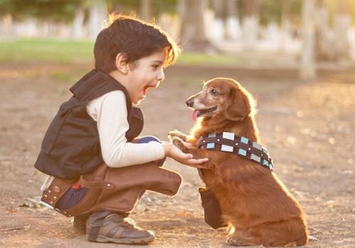Cách nuôi dưỡng tình yêu động vật ở trẻ  - Ảnh 1.
