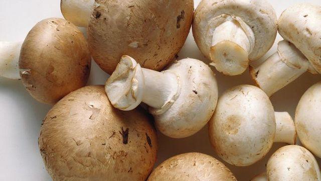 8 thực phẩm tàn phá xương từng ngày, khiến nhiều người chưa già đã đau lưng, mỏi gối  - Ảnh 7.