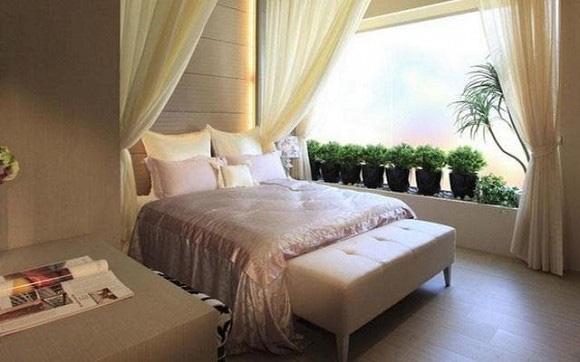 Những cây cảnh nào nên và không nên đặt trong phòng ngủ? - Ảnh 6.