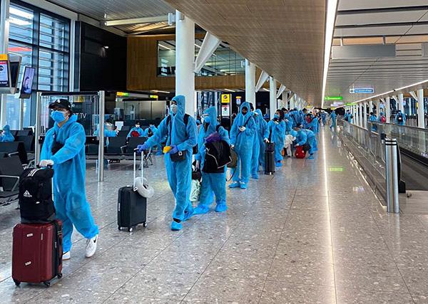 Cảnh giác lừa bán vé máy bay đưa công dân Việt Nam về nước - Ảnh 2.