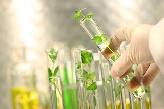 Tinh chất tế bào gốc thực vật Dr. Skin Anpha và ứng dụng Đột phá trong Nghiên cứu khoa học vào sản phẩm chăm sóc sức khỏe - Ảnh 1.