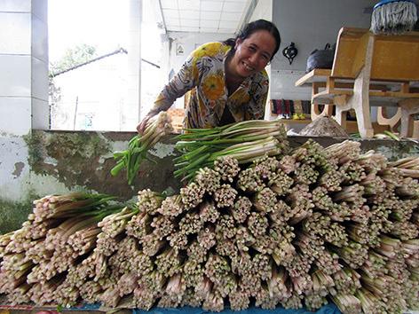 Thứ rau đồng hoang trước vứt đi không xuể, nay nhặt về trồng dưới mương, hái được bó nào lái khuân hết sạch - Ảnh 2.