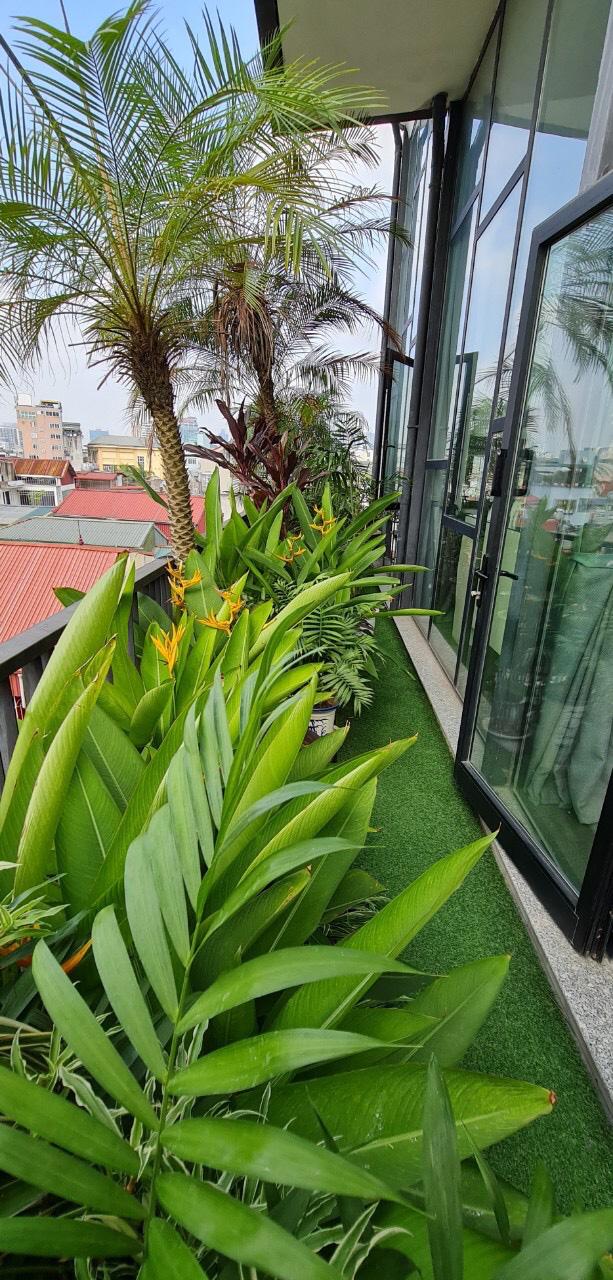 Không gian sống nhà trong vườn đầy lãng mạn của ca sĩ Thùy Dung - Ảnh 6.