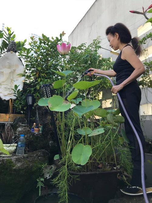 Mẹ Hồ Ngọc Hà tập Yoga, hít thở không khí trong lành trong khu vườn trên sân thượng - Ảnh 3.