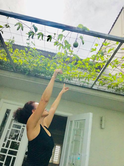 Mẹ Hồ Ngọc Hà tập Yoga, hít thở không khí trong lành trong khu vườn trên sân thượng - Ảnh 7.