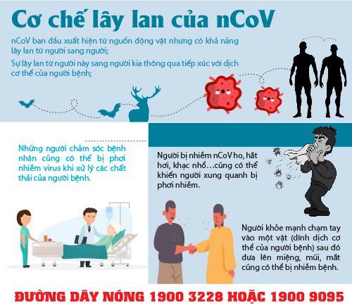 Hải Phòng: Hàng quán ế ẩm vì ảnh hưởng của COVID-19 - Ảnh 7.