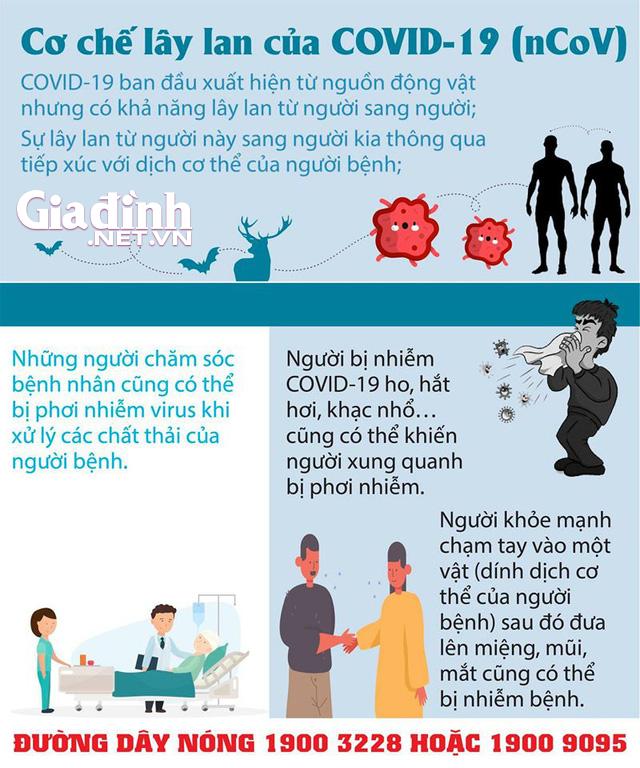 Dịch COVID-19: Những gì chúng ta biết cho đến nay - Ảnh 4.