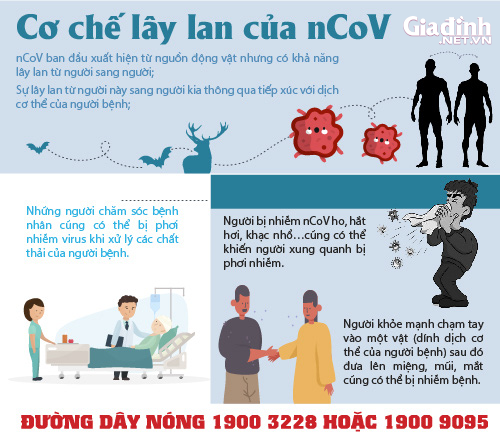 COVID-19 (nCoV) - Cập nhật mới nhất từ điểm nóng Vĩnh Phúc - Ảnh 6.