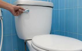 Nhà vệ sinh một tuần vẫn thơm tho nhờ mẹo nhỏ ít người biết - Ảnh 2.