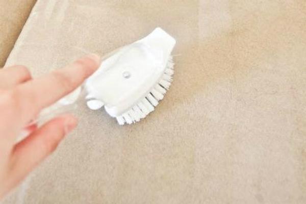 Rắc đầy muối nở lên thảm trải sàn, biết công dụng rồi chị em nào cũng muốn thử - Ảnh 6.