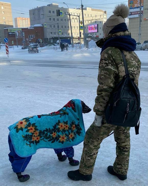 سرد ثبت منفی 40 درجه ، روسیه امروز چگونه است؟  تصویر 3