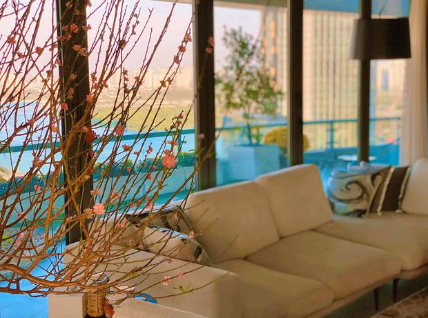 Nhìn từ ban công nhà hoa hậu Đặng Thu Thảo ai cũng thừa nhận biệt thự có view đẹp ngất ngây - Ảnh 8.