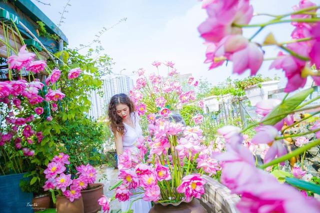 باغ گل غول پیکر در تراس خانمی از هانوی - تصویر 1.
