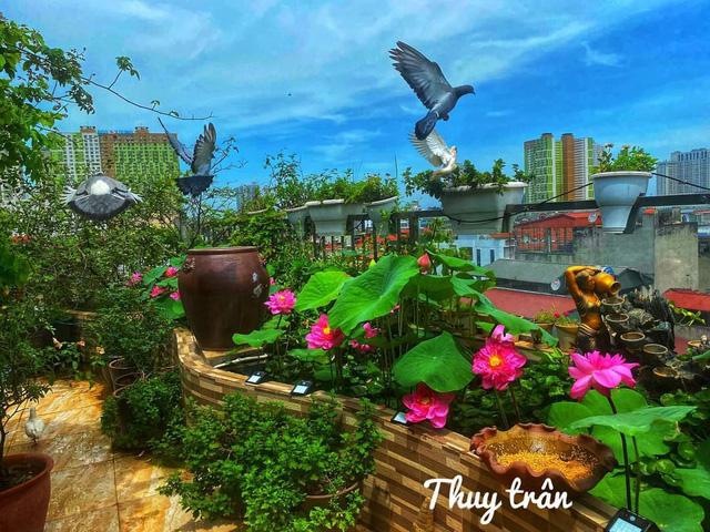 باغ گل غول پیکر در تراس خانمی از هانوی - تصویر 13.